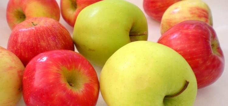 「りんご」と「なし」の違いは?