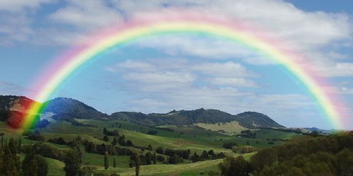 「虹」と「環天頂アーク」「環水平アーク 」の違いは?