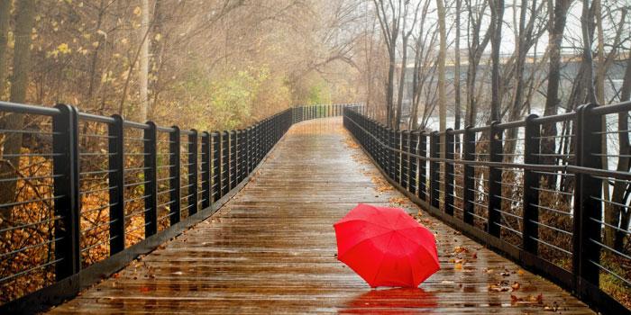 雨季」と「梅雨」の違いは? | 1分で読める!! [ 違いは? ]