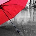 「雨傘」と「日傘」の違いは?