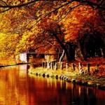 「autumn」と「fall」の違いは?
