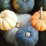 「かぼちゃ」と「パンプキン」の違いは?