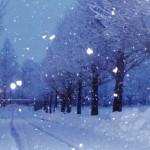 「雪」と「霰」「雹」「霙」の違いは?