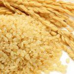 「玄米」と「白米」「発芽米」の違いは?