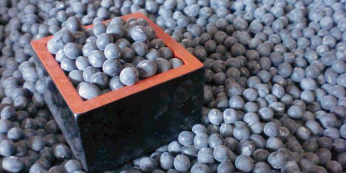 「黒豆」と「黒大豆」「ぶどう豆」の違いは?