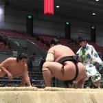 大相撲の「力士」と「関取」の違いは?