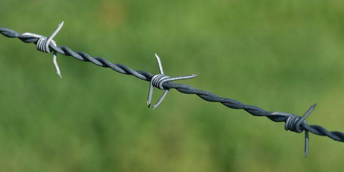 「有刺鉄線」と「鉄条網」の違いは?