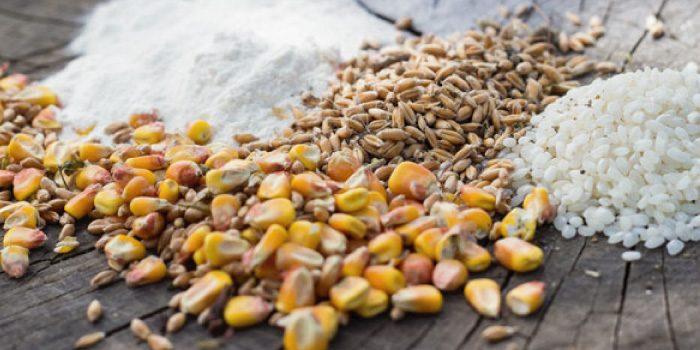 「穀物」と「穀類」の違いは?