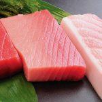 「赤身魚」と「白身魚」「青魚」の違いは?