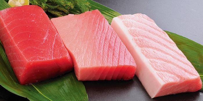 赤身魚 (マグロ)
